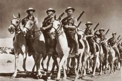 Armia Andersa w Egipcie